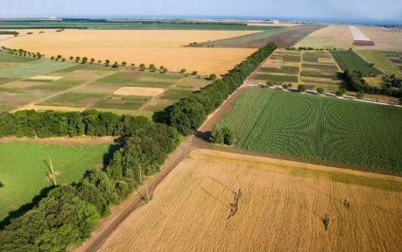 Земјоделски аларм: третина ниви незасеани, парцелите мали и расцепкани