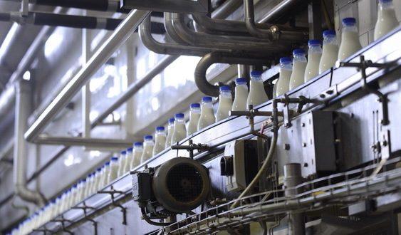 Минатата година 17 ладилници и млекарници изгубиле лиценци за работа