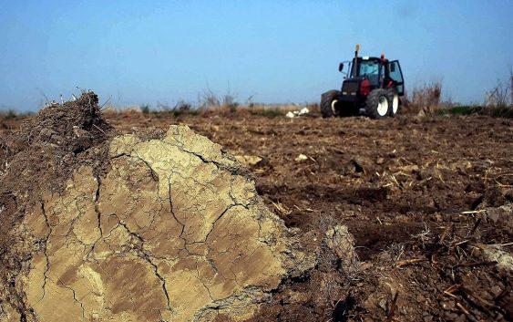 Растителното производство бележи раст од 1.8%
