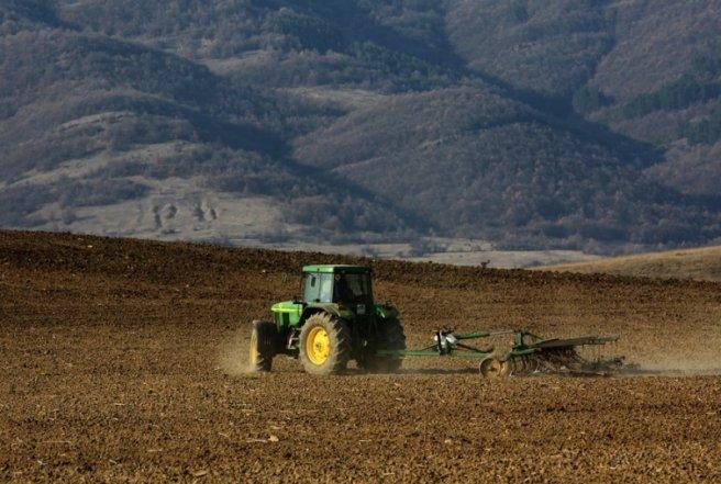 Photo of Се сее сончоглед, по Благовец ќе се сади и пченката