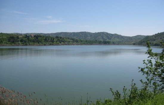 """Велешкото езеро """"Младост"""" порибено со 350 килограми крап"""