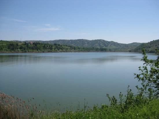"""Photo of Велешкото езеро """"Младост"""" порибено со 350 килограми крап"""