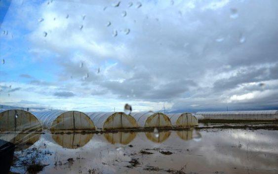 Земјоделството на удар на климатските промени