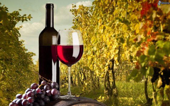 Две винарски визби не го платиле ланското грозје – Избришани се од регистарот