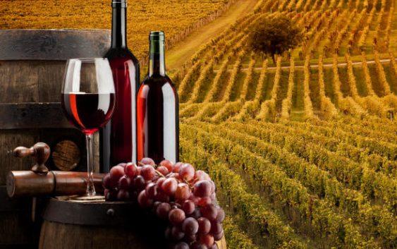 Лозарите бараат гаранции дека винарниците ќе им го исплатат родот