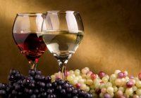Меѓународна едукација за вино за вработени од повеќе македонски винарии