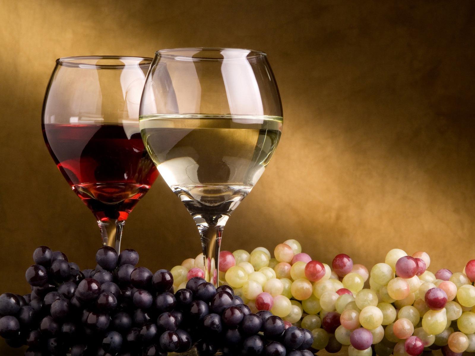 Photo of Меѓународна едукација за вино за вработени од повеќе македонски винарии