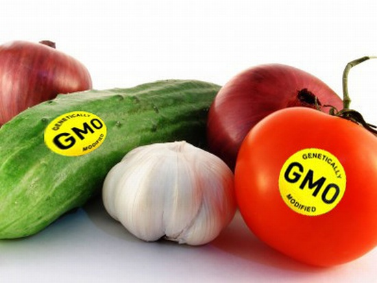 Photo of Нема генетски модифицирани производи на пазарот