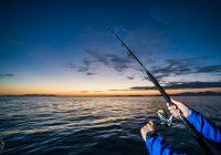 Откриени 28 рибокрадци