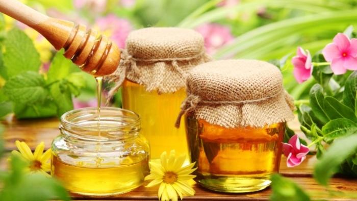 Photo of Производството на мед може да биде добар бизнис?