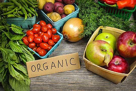 samo 400 zemjodelci proizveduvaat organska hrana