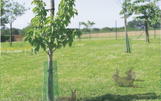 Штетите во земјоделството може да се пријават до 27 мај