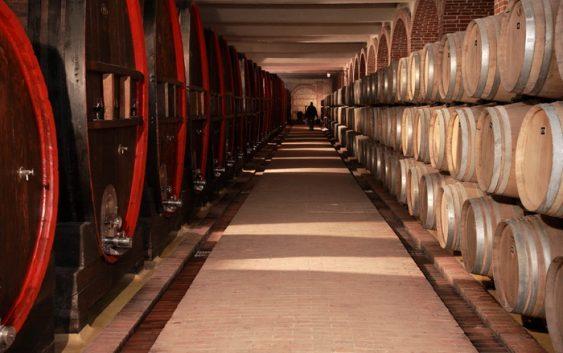 """""""Тиквеш"""" e прва винарница од земјава која искористи ИПАРД фондови"""
