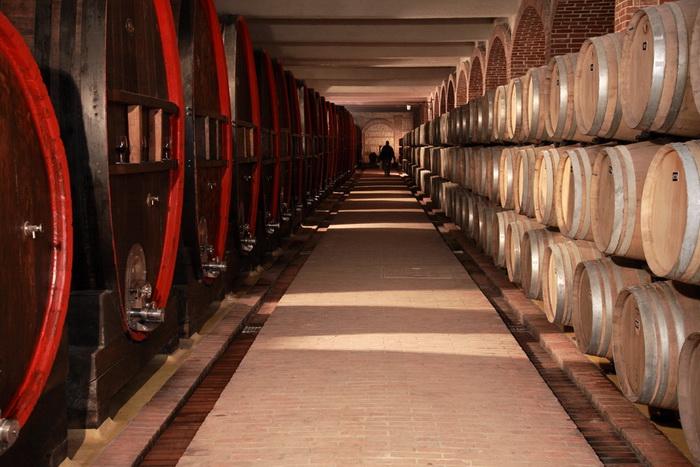 """Photo of """"Тиквеш"""" e прва винарница од земјава која искористи ИПАРД фондови"""
