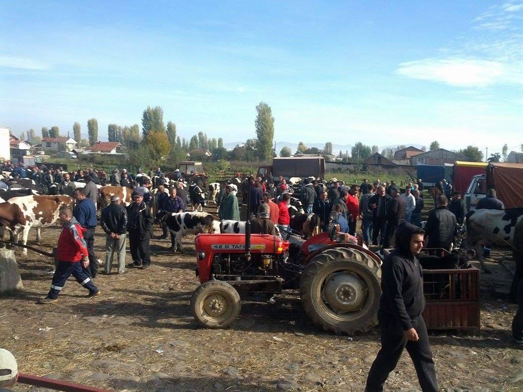Photo of Затворен сточниот пазар во Битола