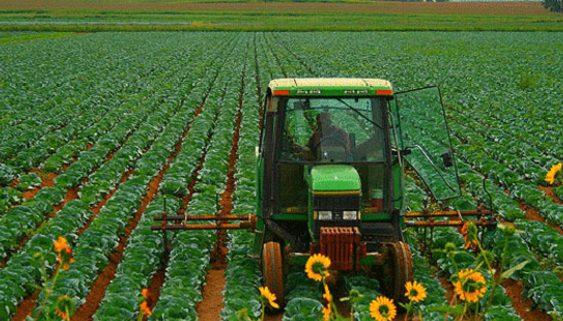 Завршуваат дел од огласите за закуп на државно земјоделско земјиште