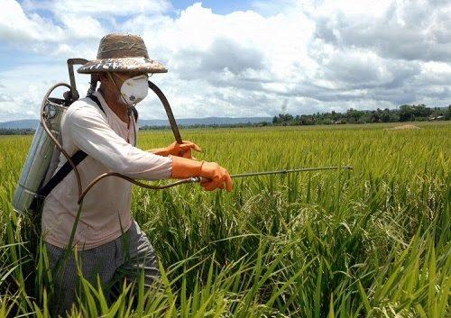 Земјоделците да не претеруваат со пестициди