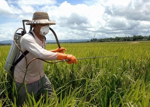 Photo of Земјоделците да не претеруваат со пестициди