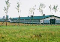 Бесплатни технички проекти за изградба и реконструкција на фарми