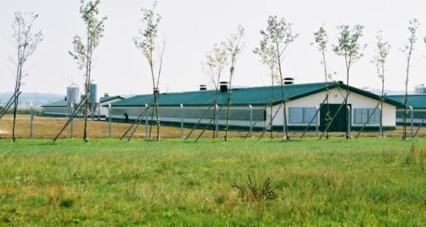 Photo of Бесплатни технички проекти за изградба и реконструкција на фарми
