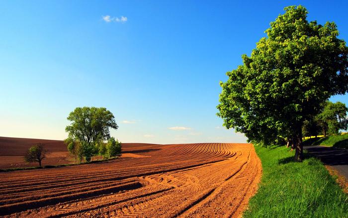 Photo of Годинава извршени 441 инспекциски надзор врз основа на Законот за земјоделско земјиште