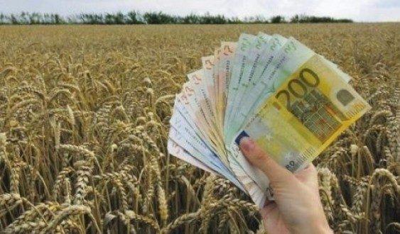 Голем интересот за субвенции кај велешките земјоделци