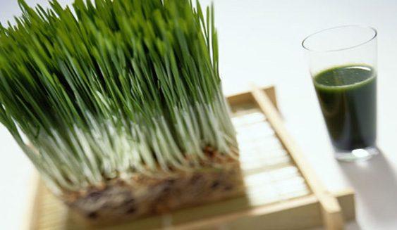 Исчистете го организмот со пченица