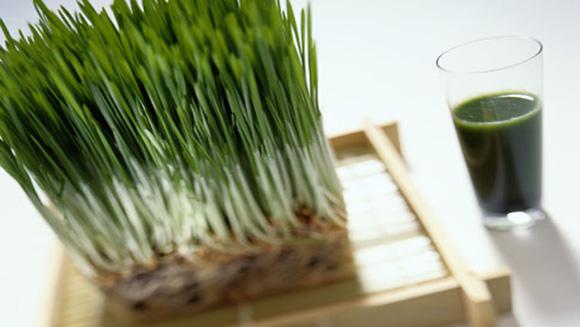 Photo of Исчистете го организмот со пченица
