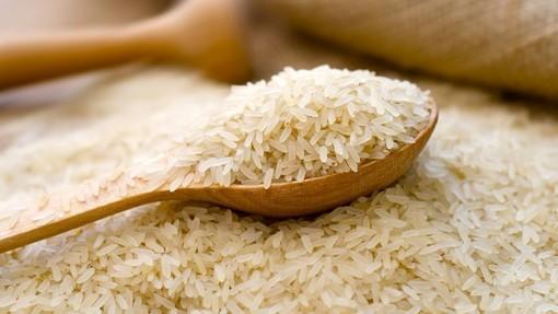 Photo of Нови мерки на Владата за откуп на оризовата арпа