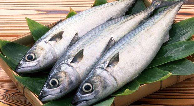 Photo of Одземени риби од угостителски објект во Охридско
