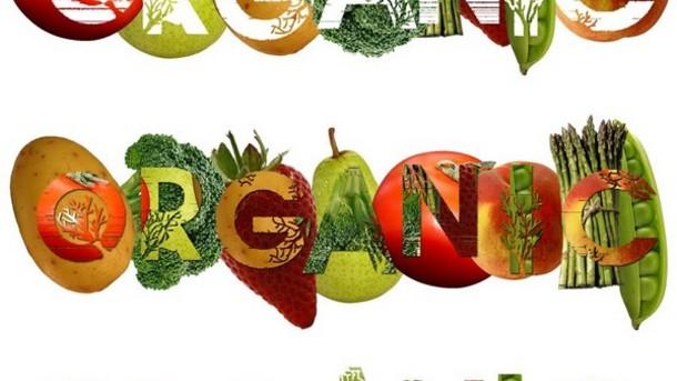 Photo of Предавање за органската храна