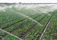 Системите за наводнување во Балванско поле ставени во функција