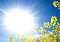 Во Македонија денес не очекува уште еден натпросечно топол летен ден