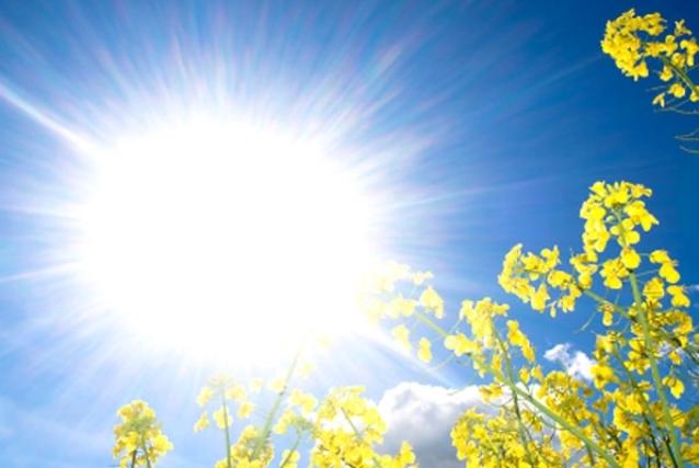 Photo of Во Македонија денес не очекува уште еден натпросечно топол летен ден