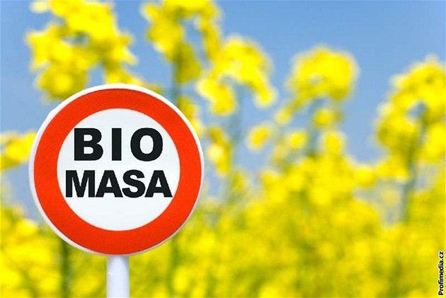 Photo of Биомасата е најдобар извор на екоенергија