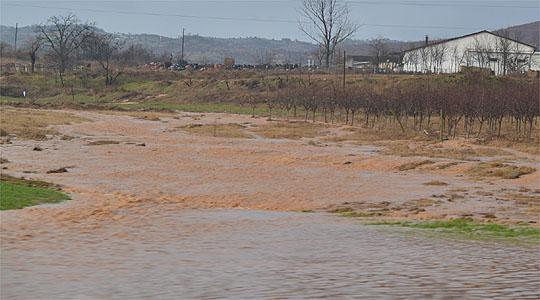 Photo of Силното невреме поплави куќи и уништи род со тутун и жито во долненско