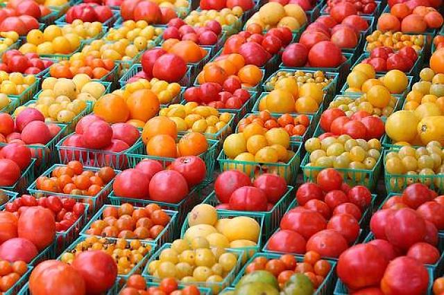 Photo of Во храната многумина гледаат шанса за свој бизнис