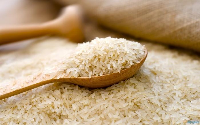 Photo of Во Кочанско се очекуваат рекордни приноси ориз