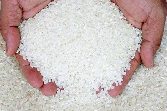 Photo of До 31-ви август рок за субвенции за оризова арпа