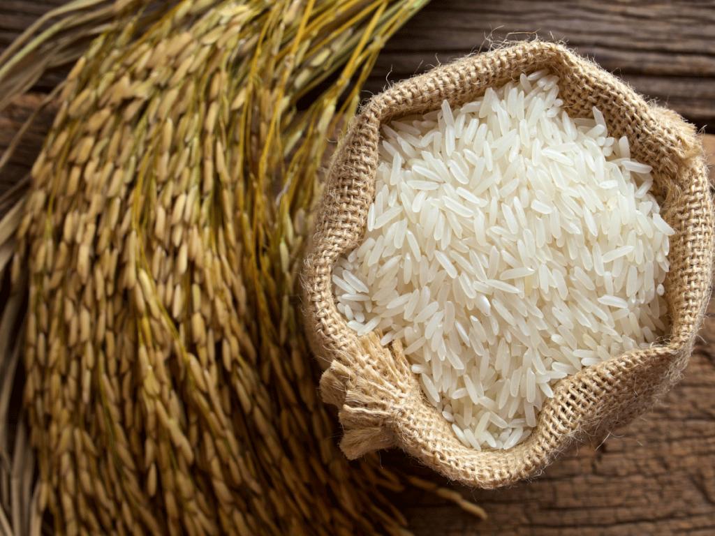 Photo of Истекува рокот за пријавување субвенции за оризова арпа