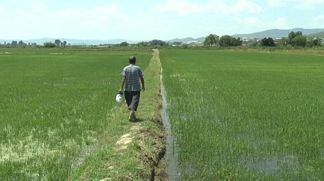 Photo of Ќе се санира дел од каналот за наводнување кон Војшанци
