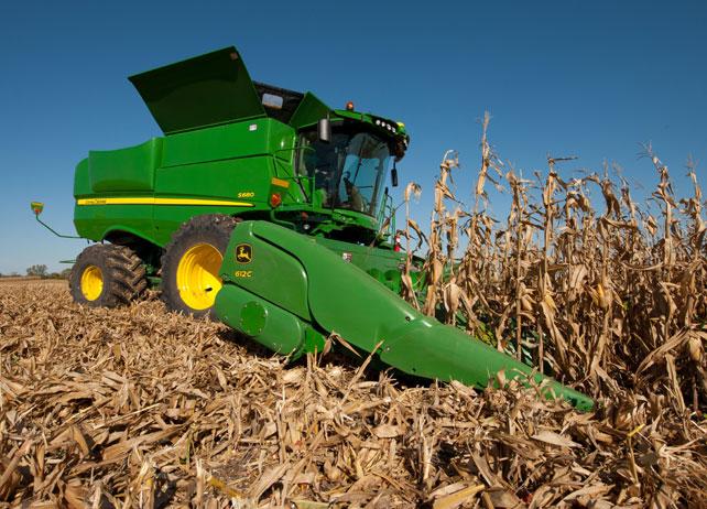Photo of Ожнеана пченицата засеана на узурпирано државно земјиште