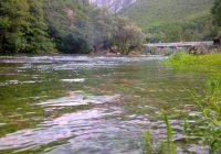 Помор на пастрмка во горниот тек на реката Треска