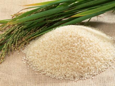 Photo of Уште дваесетина дена за аплицирање за субвенции за оризова арпа