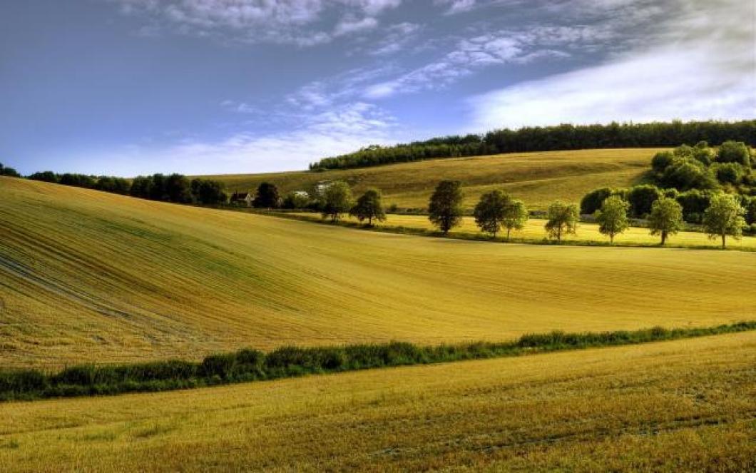 Photo of Злоупотребени 960 хектари државно земјоделско земјиште во Штипско-карбинскиот регион