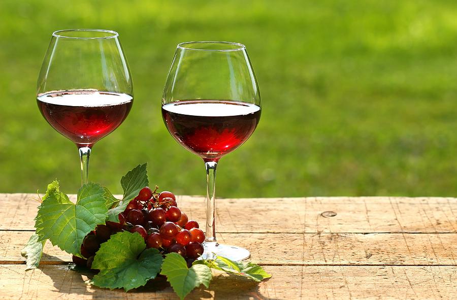 Photo of Бугарија годинава очекува да произведе 160 милиони литри вино