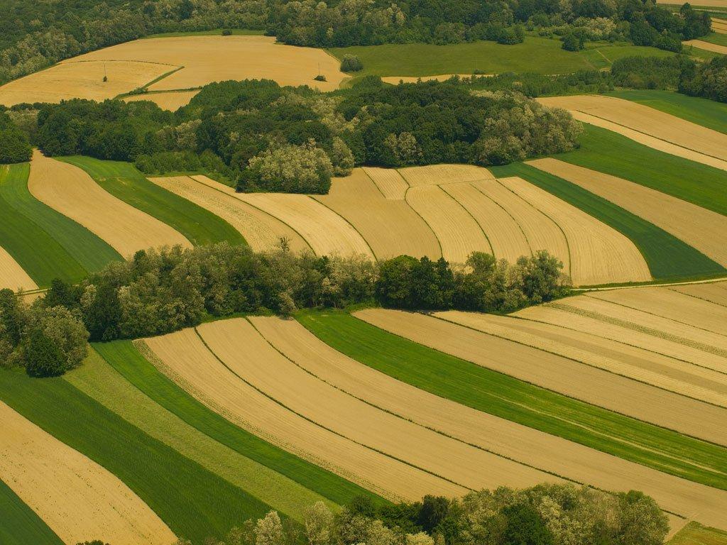 Photo of Домашните ниви ги работат 170.581 индивидуален земјоделец и 304 фирми