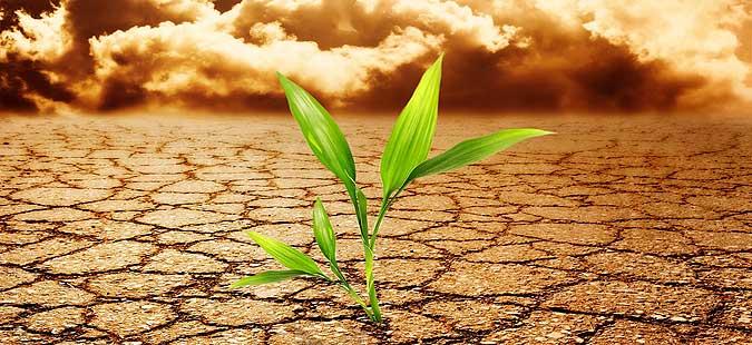 Photo of Кампања за адаптација на земјоделството кон климатските промени
