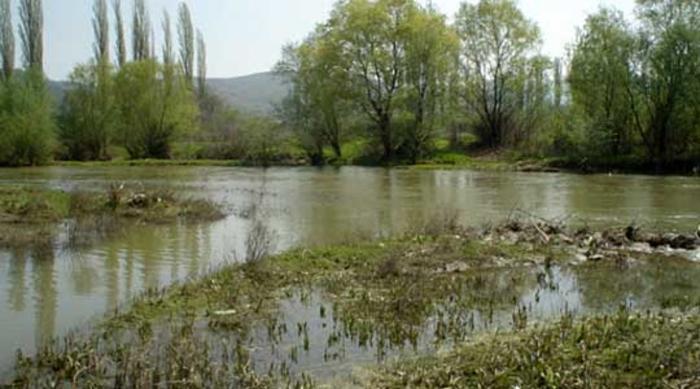 Photo of Од невремето штети на земјоделските посеви од 13,2 милиони денари во Гевгелиско