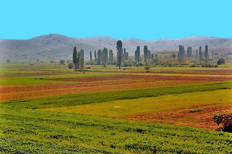 Photo of Пченица, јачмен и грашок ќе се сади наесен во Пелагонија